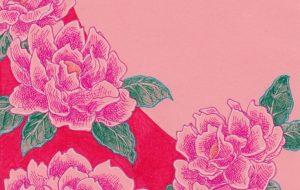 紅牡丹 - 虎目梨那