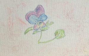 かわいい花 - はるえ