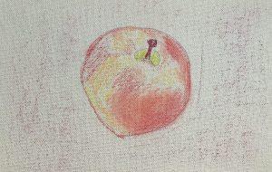 ほのかに赤い林檎 - はるえ