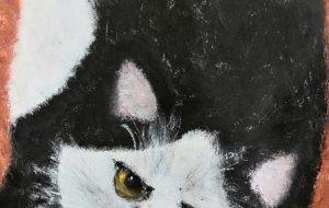 野良猫のように - 愛徳