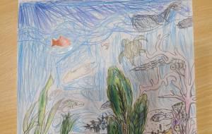 海の生き物 - ひーくん