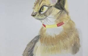ネコ - ラジエル