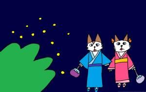 ホタル祭り - syu-mi