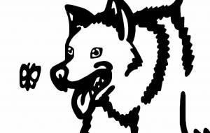 紀州犬 - シマハイエナ