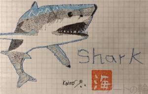 「Shark」 - Kaito