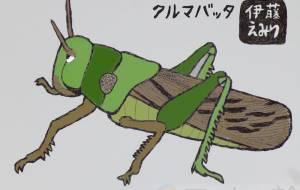 車バッタ - 伊藤恵美里