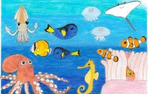海を彩るいきものたち - SAYAKA