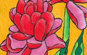 八重咲きチューリップ - 阿部貴志